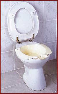 Bideteinsatz für das WC